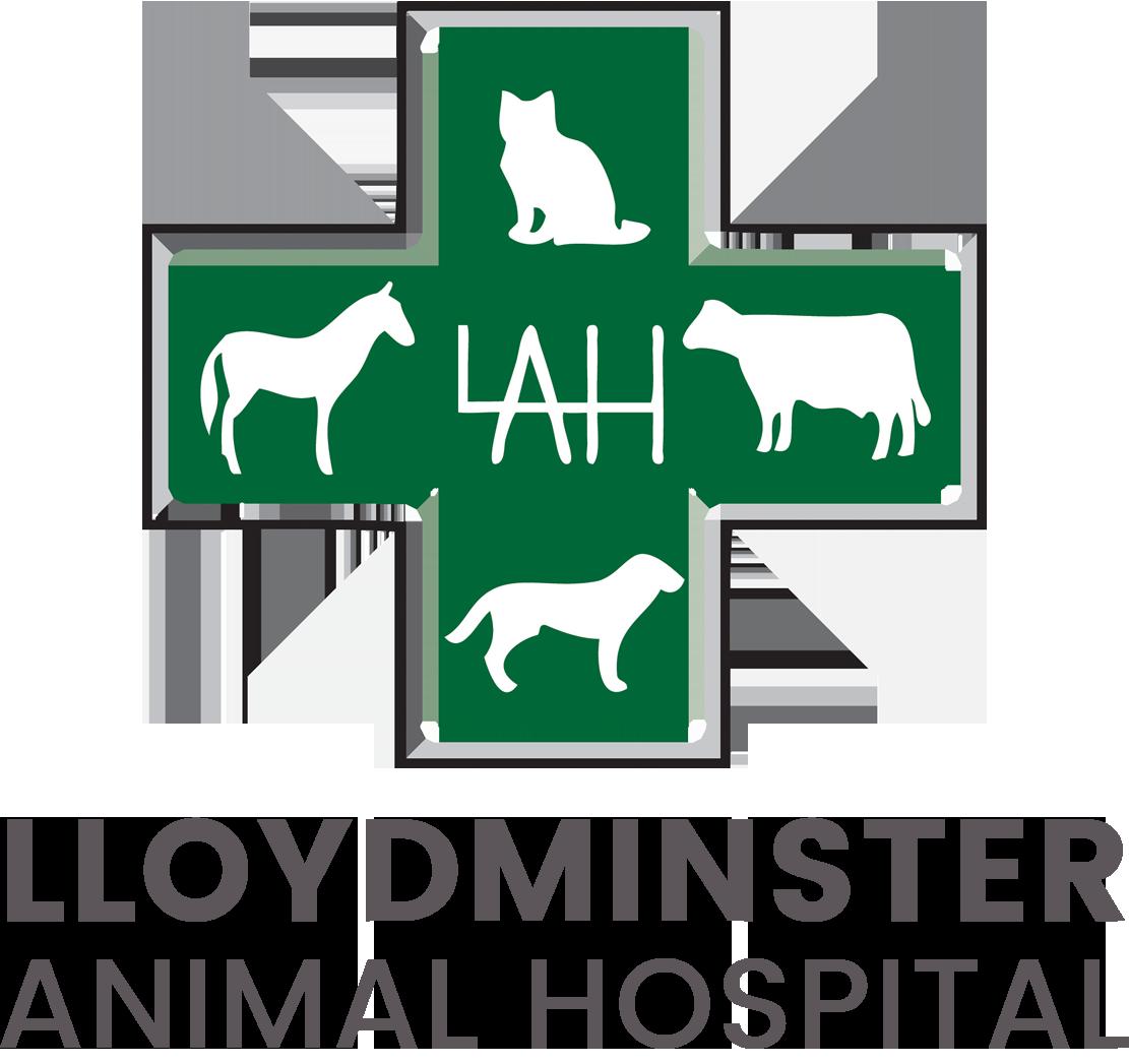 Welcome To Lloydminster Animal Hospital
